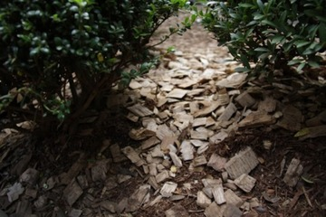"""""""フェアな木""""でつくられた家具を選ぼう!身の回りにある木を考えるきっかけをつくる「フェアウッド・パートナーズ」"""