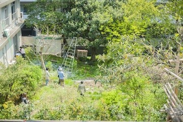 マンション丸ごとコミュニティガーデンの拠点に。ご近所さんが集う緑のオアシス「たぬき村」とは?