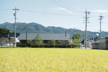 「まずやってみせる。」長野にオフグリッド診療所を開業した田邉哲さんに聞く地域のこと、エネルギーのこと