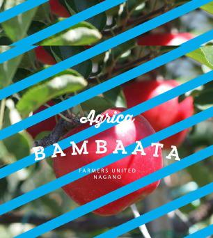 Agrica BAMBAATA