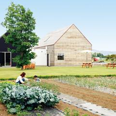 田園風景に囲まれた芝生の庭と畑のあるカフェ兼住居