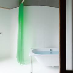 アールの合板壁がつくる美しい空間で感性豊かに暮らす