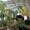 ツツミ建築設計室のプロフィール写真