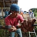株式会社木神楽のプロフィール写真