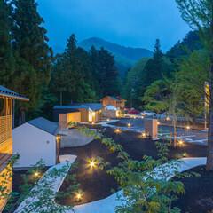 自然と調和する「木造ホテル」建築事例3選