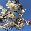 takashiのプロフィール写真