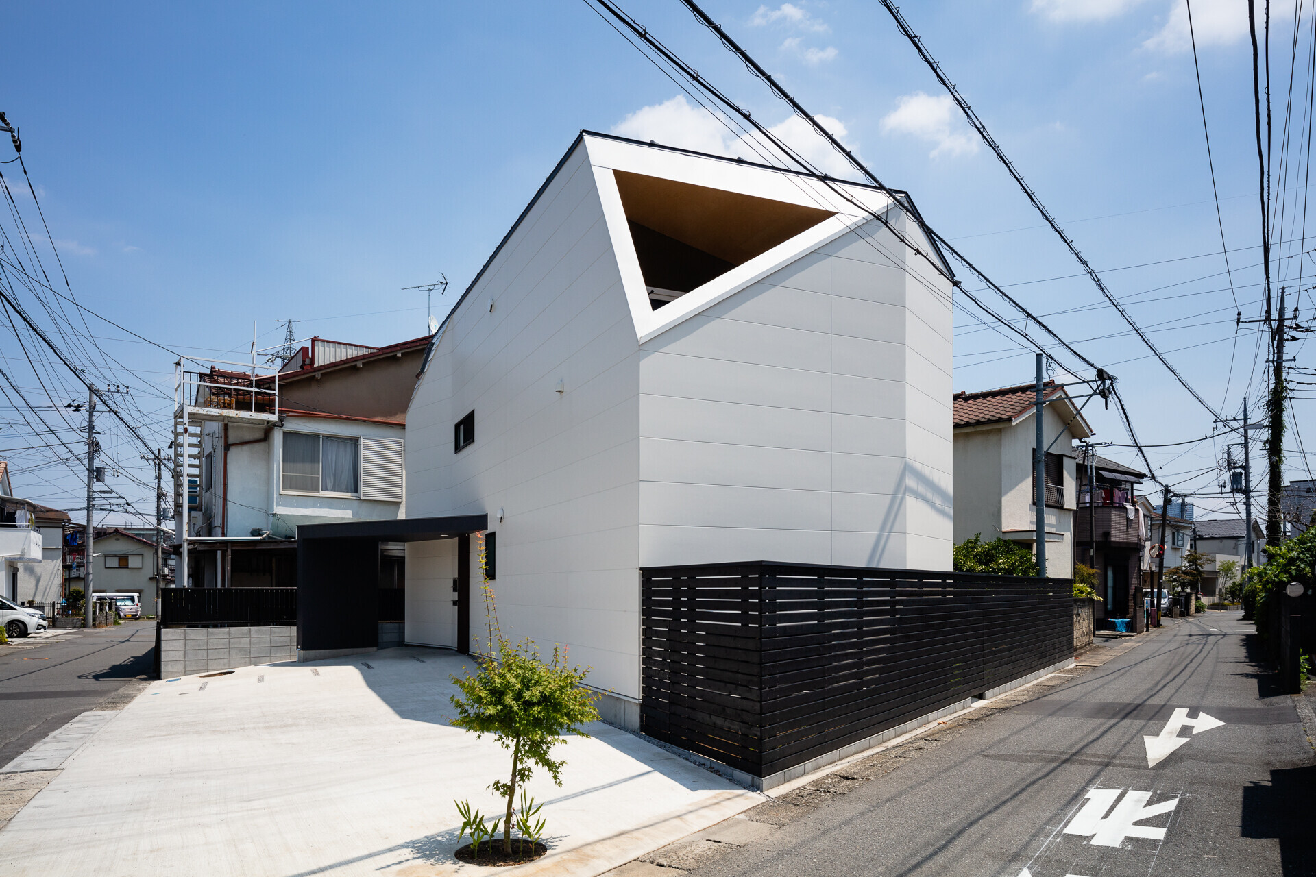 photo by大沢誠一   ミカンの木の育つ二世帯住宅